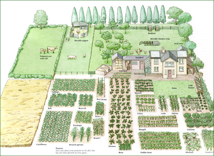 Garden Planning Tips – Part 2, by Sarah Latimer