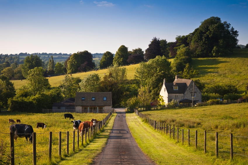 Buying and Selling Rural Land: Considering The Basics
