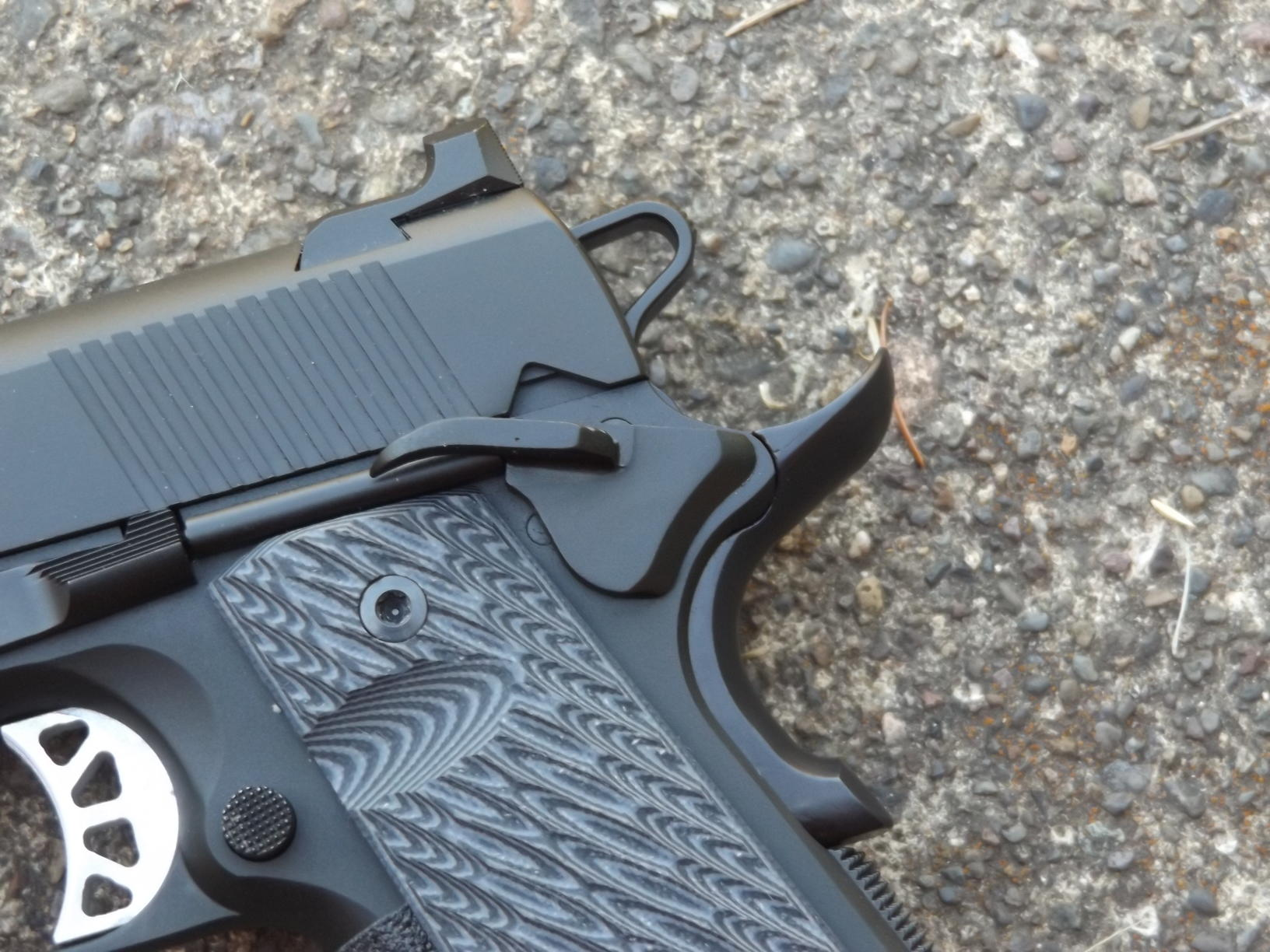 Springfield Armory's Range Officer Elite Champion, by Pat