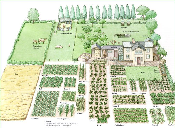 Homestead Design from a Practical, Tactical, Agricultural Survival Perspective, by C.F