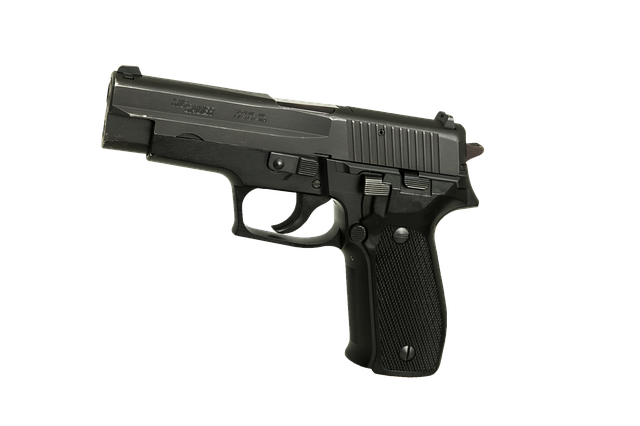 JWR's Recommendations of the Week - SIG Pistols