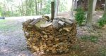 Firewood Round Stacking