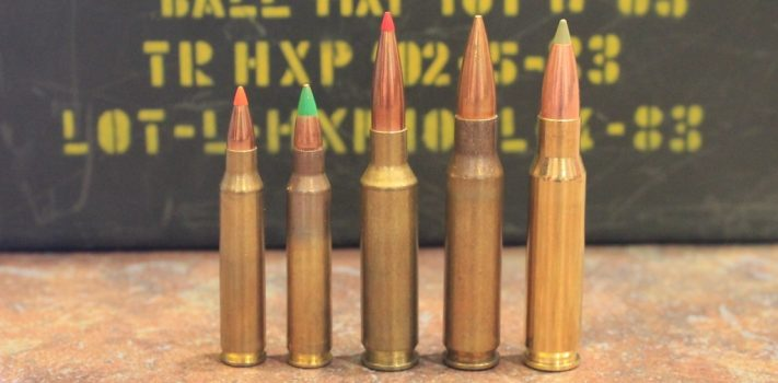 6.5 Creedmoor for Survival? by John McAdams