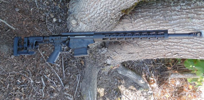 Ruger Precision .308 Rifle, by Pat Cascio
