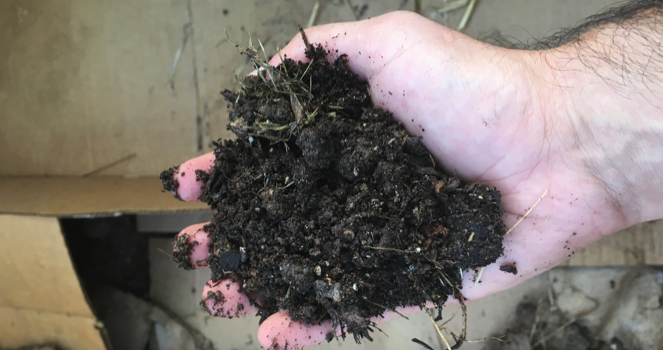 Composting Your Black Gold – Part 2, by  Hobbit Farmer