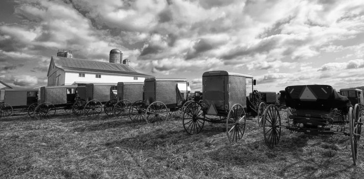 Thoughts on an Amish Auction and Preparedness, by 3AD Scout