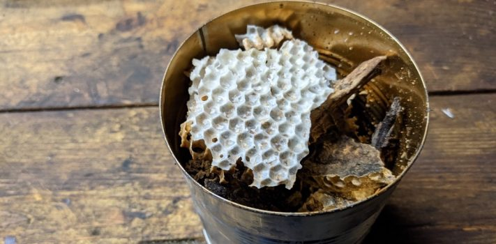 Salvaging Beeswax, by The Novice